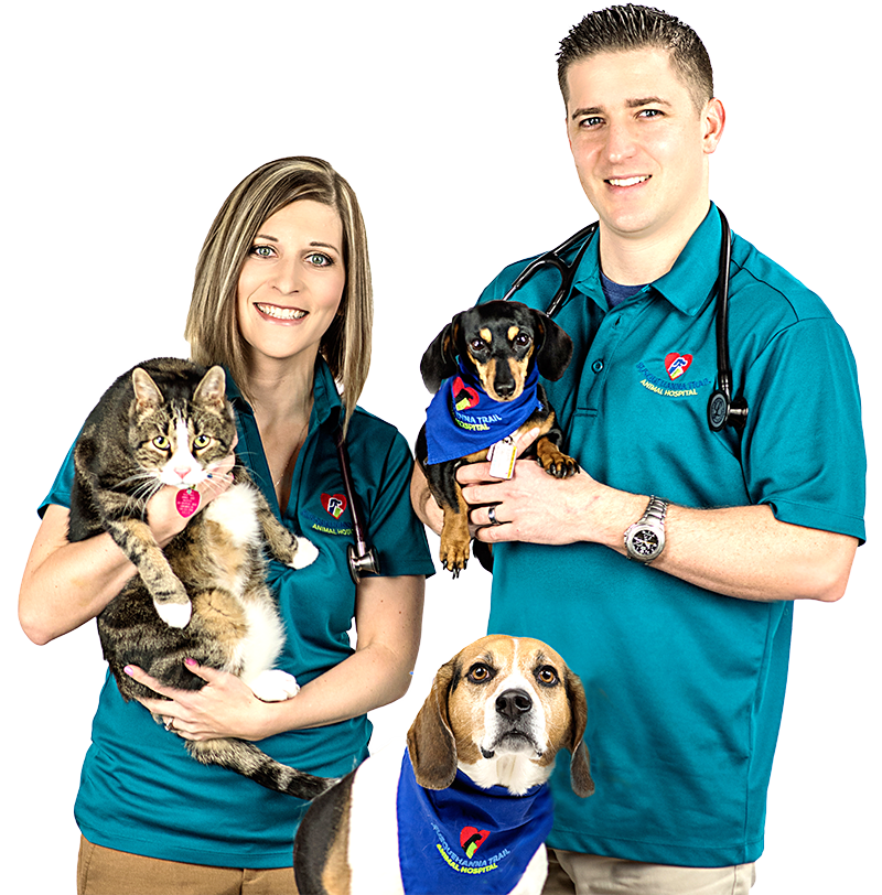 Veterinarian Lori & Tristan with Pets